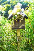 Birdhouse in the Garden
