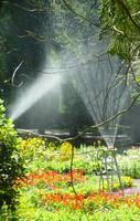Water spray in garden