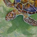 """Caribbean Sea Turtle"" by creese"