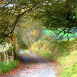 """""""Country Road"""" by brianraggatt"""