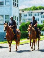 Two Mounted Police