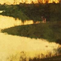 summit sunset deer variation Art Prints & Posters by r christopher vest