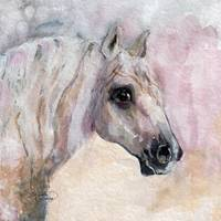 Percheron Portrait Watercolor by Ginette