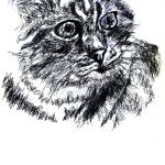 """""""cat - drawn by copying the cover of a book"""" by paul-ramnora"""