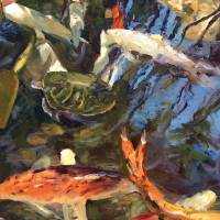 Reflections On Koi Art Prints & Posters by Noreen Rebiere Coup