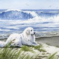 """Great Pyrenees at the Beach"" by k9artgallery"