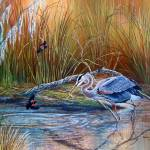 Great Blue Heron - Marsh Madness