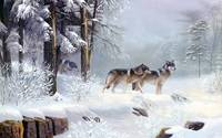 Wolves In The Forest In The Morning Snow