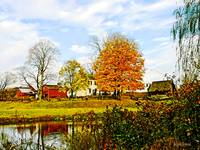 Farm by Pond in Autumn