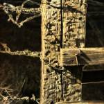 """""""Fence Post with Barbed Wire - Sepia"""" by Groecar"""
