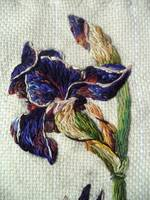 iris flower needle painting