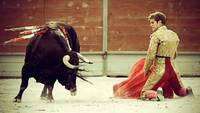 Spanish Bull Fighter And His Bull