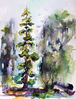 Tall Trees Landscape Wildlife Nature Watercolor