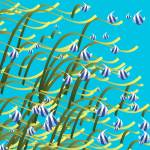 """Underwater life"" by gavila"