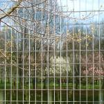 """""""Cultural Roots (Spring Reflected at the Met)"""" by MaryLorArt"""