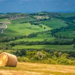 """Classical tuscan landscape"" by kalishko"