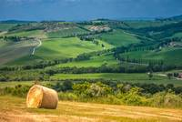 Classical tuscan landscape