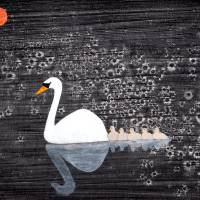 Swan Family Art Prints & Posters by Stephen Twite