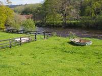 Ireland River Nore Pasture with boat and fence