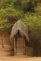 Bamboo Bridge With Thatched Roof