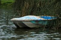 Skiff in a Marsh