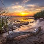 """Driftwood Sunset"" by JPMcCool"