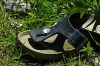 Sandal in Grass