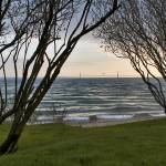 """Mackinac Bridge Thru Trees"" by petemeade61"