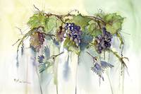 20 x 30 mom's hummers in grapes giclee printingmas