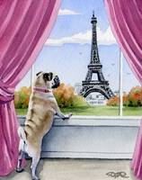 Pug in Paris