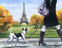 Rat Terrier Paris