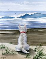 West Highland Terrier Beach