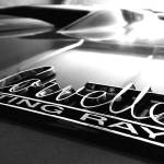 """Corvette Stingray Hood Emblem"" by Automotography"
