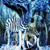 Zebra Storm by Lisa Rich