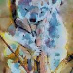 """""""Koala"""" by LJdesigns"""