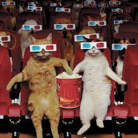 """PetMovie"" by johnlund"