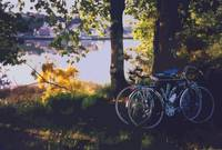Bicyles by the Lake