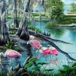 Hillsborough River - Roseate Spoonbills