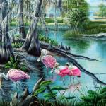Hillsborough River - Roseate Spoonbills