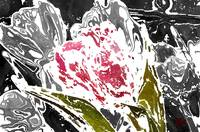 Modern Abstract Art Print Floral Art