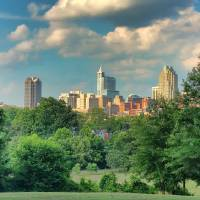 Raleigh From Dorothea Dix Art Prints & Posters by Paulette Wright