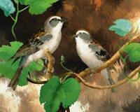 Painting of Two Birds on Limb