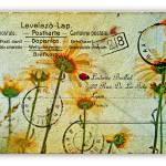 """Carte Postale"" by JamesHanlon"