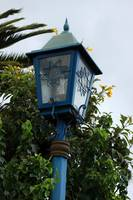 Lamp Post in a Park