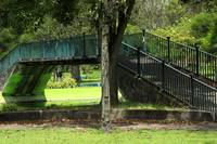Footbridge in a Park