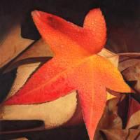 AutumnContemplation Art Prints & Posters by Denise Howard