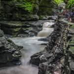 """Stream at Watkins Glen New York"" by dbwalton"