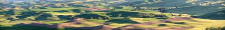 Rolling Hills of the Palouse