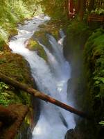 Sol Duc Falls - Olympic National Park