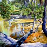 The Hillsborough River- A Place Forged by Time.